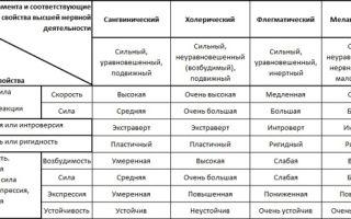 Кто такой сангвиник: характеристика типа характера