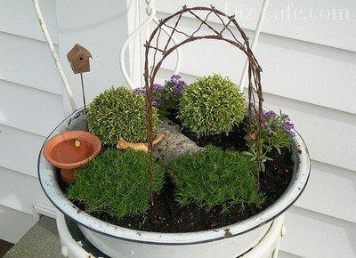 Сад в горшке своими руками