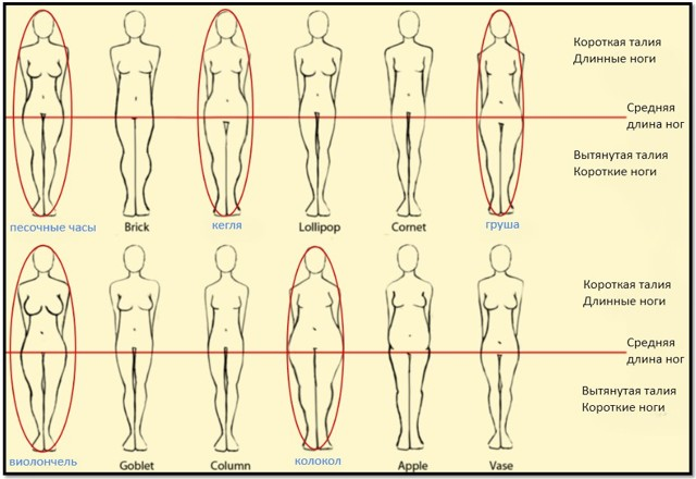 Как уменьшить в объеме ноги: секреты красоты