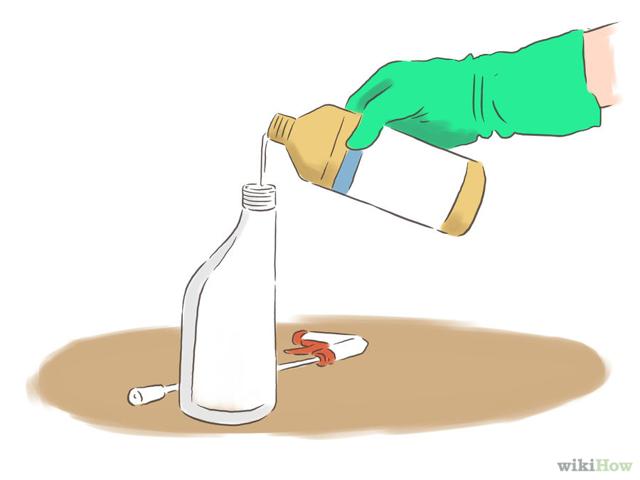 Грибок в квартире: как убрать плесень со стены