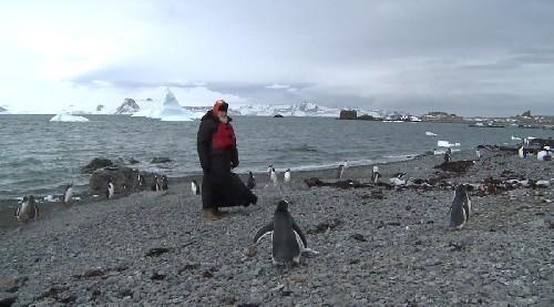 Антарктида: загадки и тайны