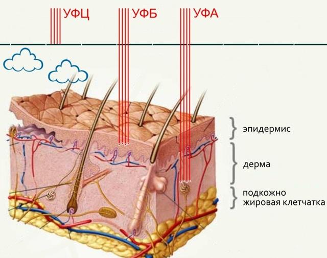 Загар в солярии: польза и вред