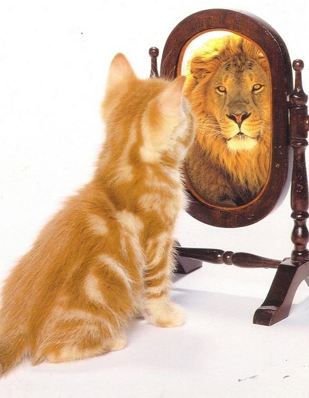 Тренинг уверенности в себе: раскрываем потенциал