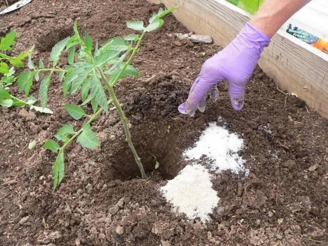Внесение минеральных удобрений в почву