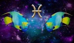 Совместимость знаков зодиака в браке и любви: анализ перспектив