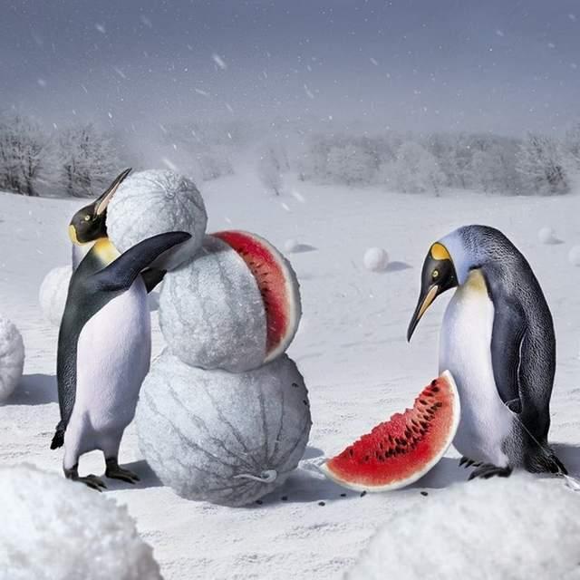 Как сохранить арбуз до зимы в домашних условиях